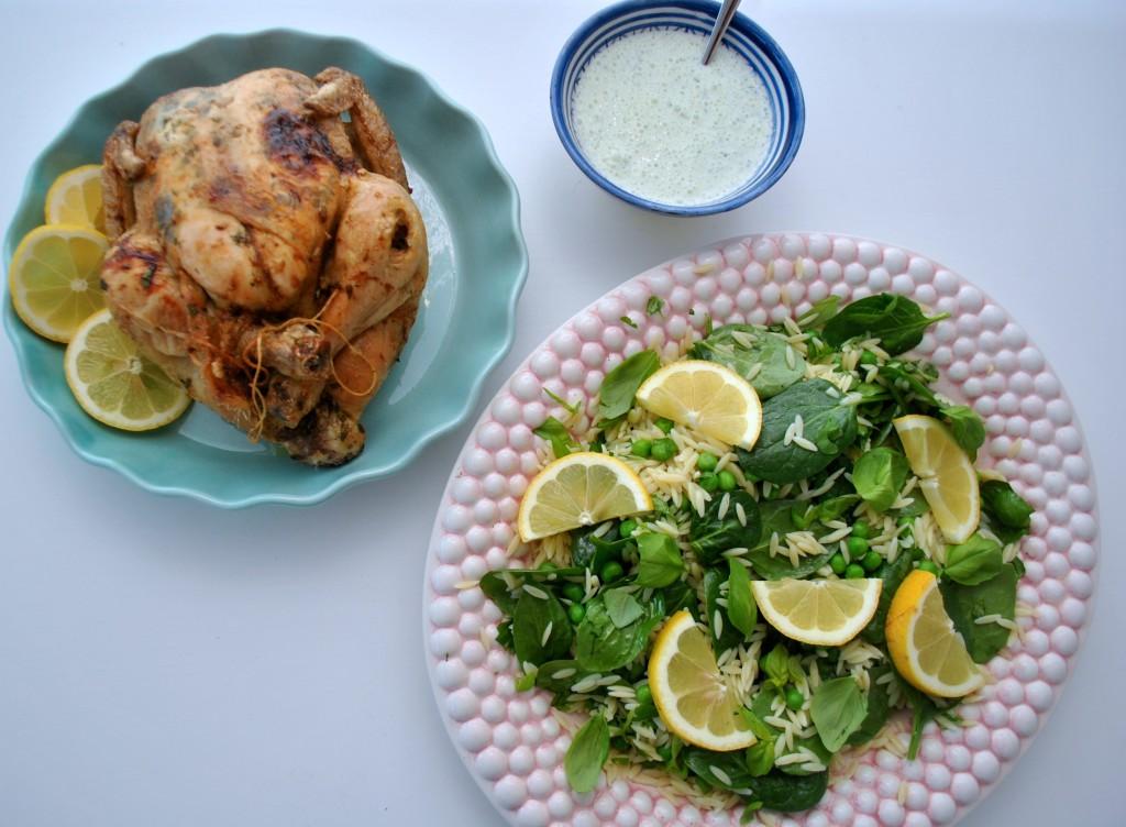Vårig kyckling och risonisallad